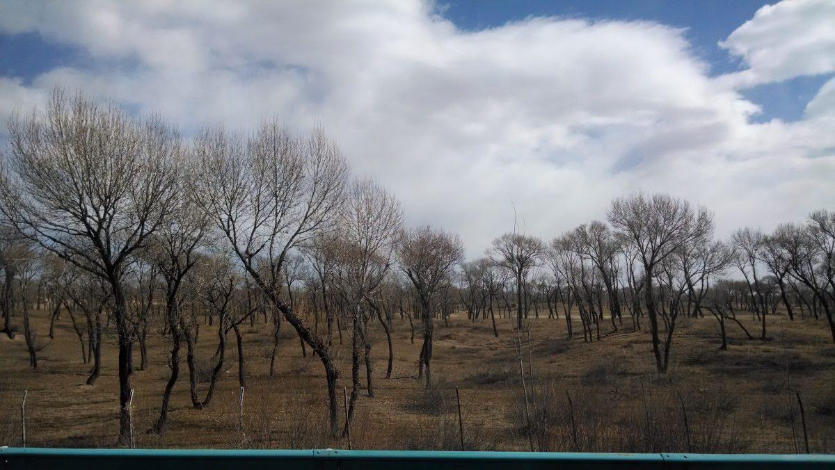 内蒙古·乘汽车自准格尔旗到呼市