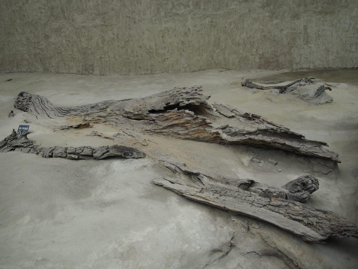 金沙遗址博物馆·祭祀区内的古河道