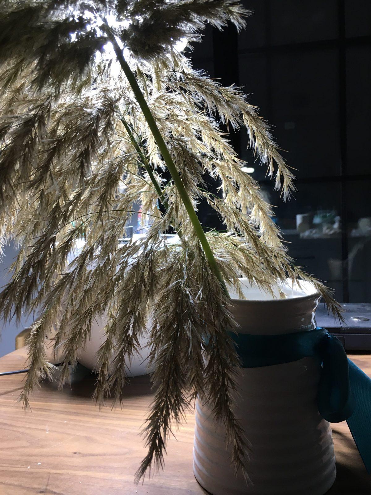 秋季·芦花·家居装饰