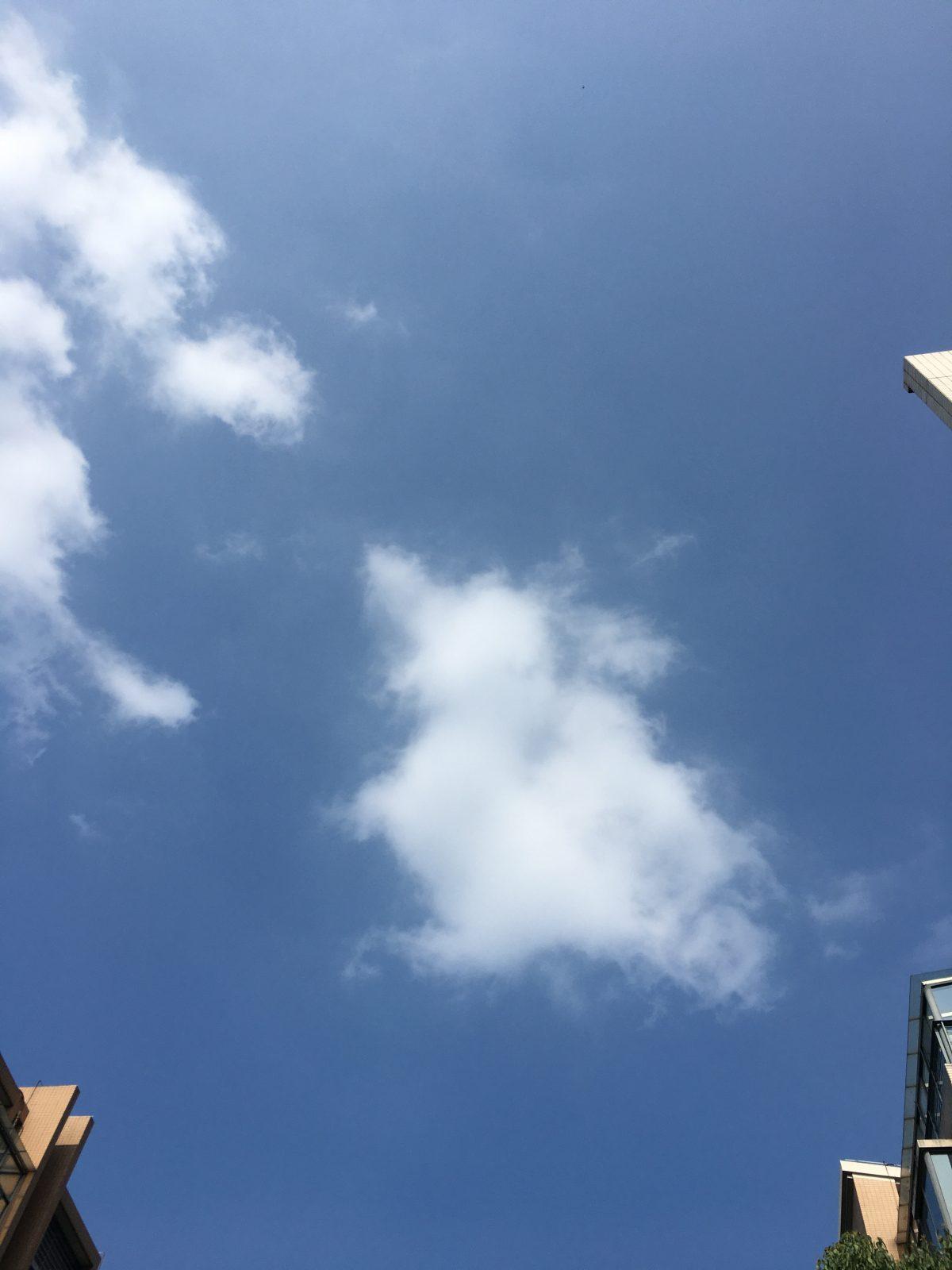 夏季·天空·烈日·凤鸟形云