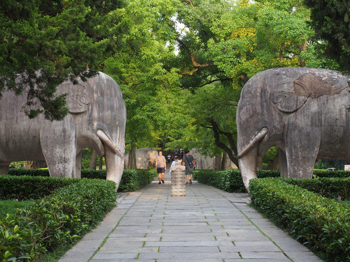 江苏·南京·朱元璋的陵墓·明孝陵石像生·石象