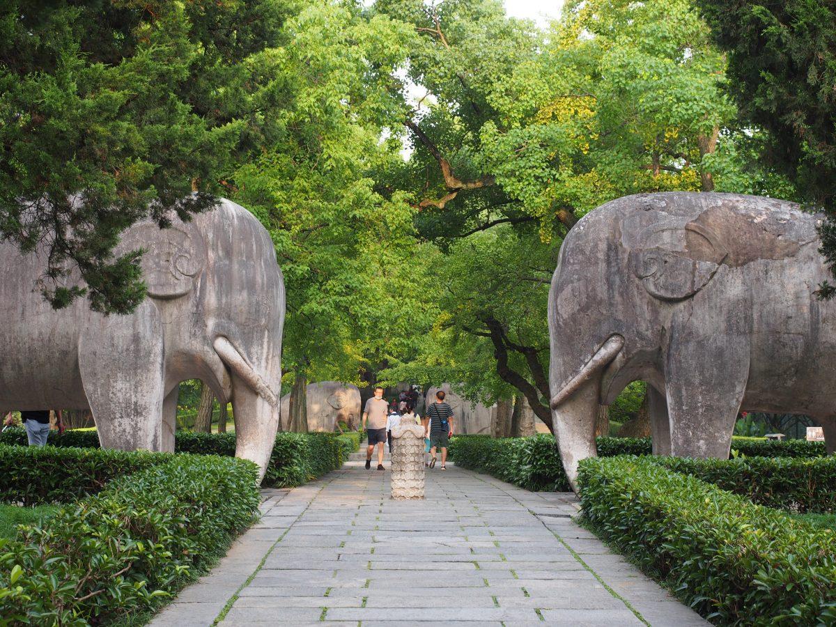 明孝陵·石刻·石象