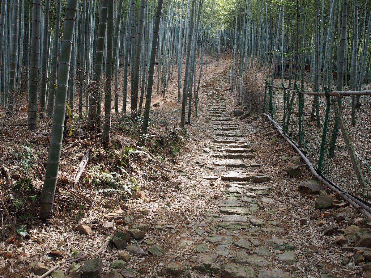 徒步宜兴岭下村