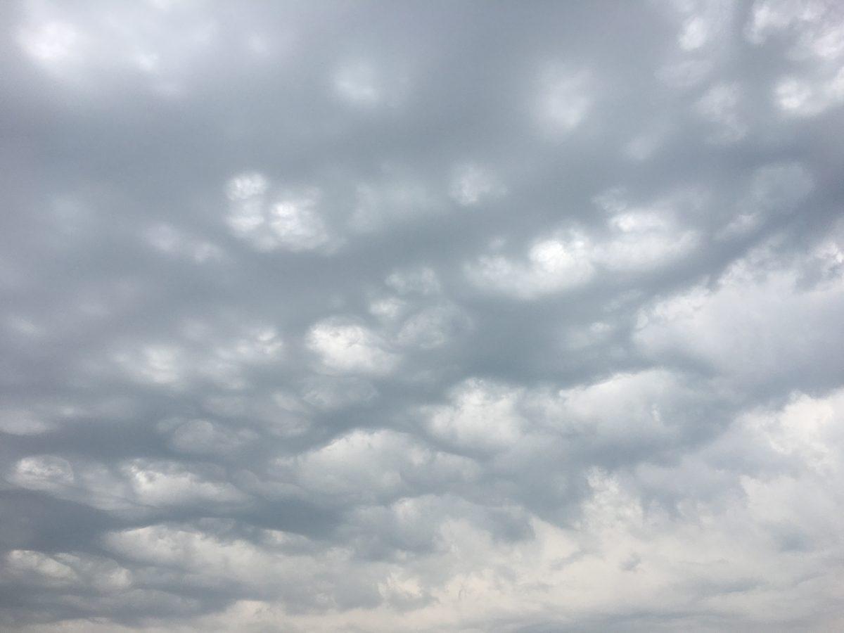 江苏徐州·糙面云