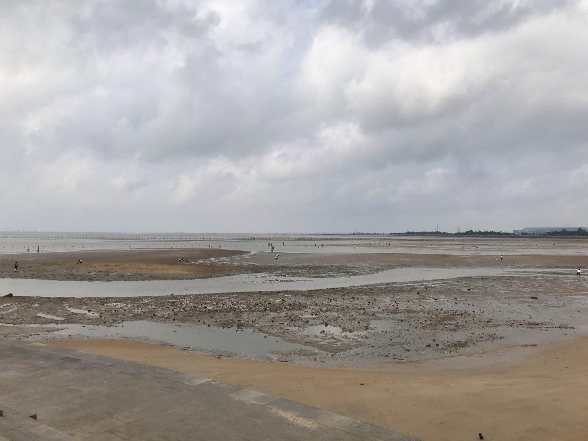 多岛海滩涂
